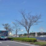 【まちづくり】「街と生き」てきた遠鉄グループの姿-浜松と遠鉄:第4回