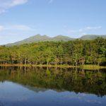 【観光】自然保護と地域振興の共存へ向けた長い道のり―世界遺産知床・斜里